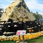 Jucker Farmart - La fiesta de las calabazas - Matterhorn, 2011