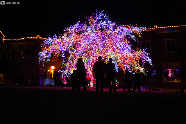 Los 20 Árboles de Navidad más atractivos de 2012