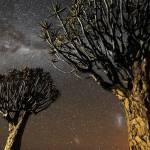 Timelapse del cielo nocturno de Namibia