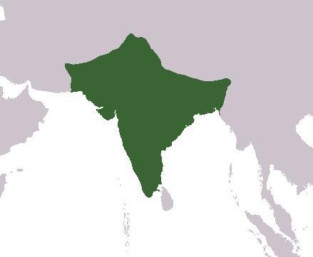 Viajar por la India: India explicada en 3 minutos