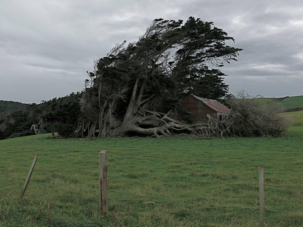 Punta Slope - Nueva Zelanda