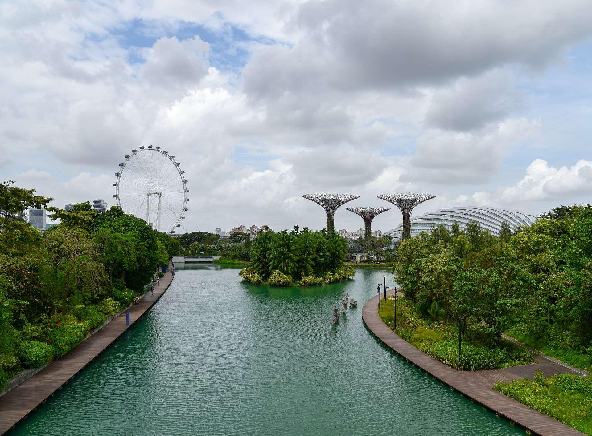 Los s per rboles de singapur o supertree grove en gardens by the bay for El super garden grove