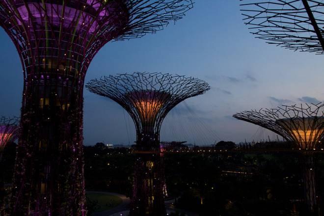 Los súper árboles de Singapur - Luces