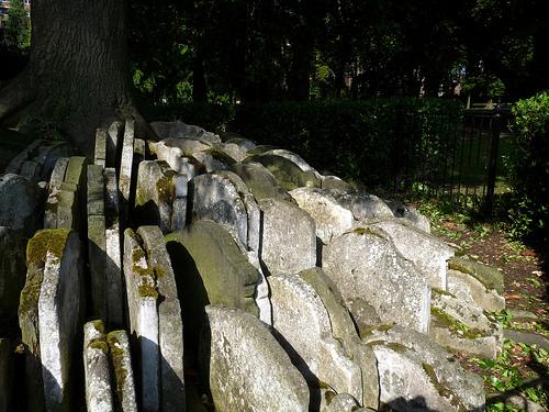 Gravestones around a tree
