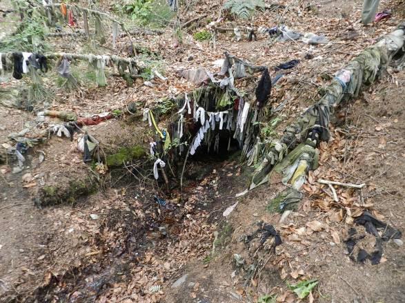 Pozos Clootie: Los árboles Célticos de los deseos