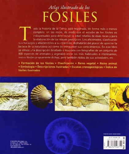 Atlas Ilustrado De Los Fosiles/ Illustrated Atlas of Fossils (Spanish Edition) 1