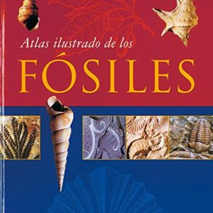 Atlas Ilustrado De Los Fosiles/ Illustrated Atlas of Fossils (Spanish Edition)