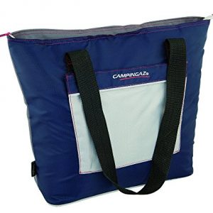 Fold Carry bag Cool Thermal 13l