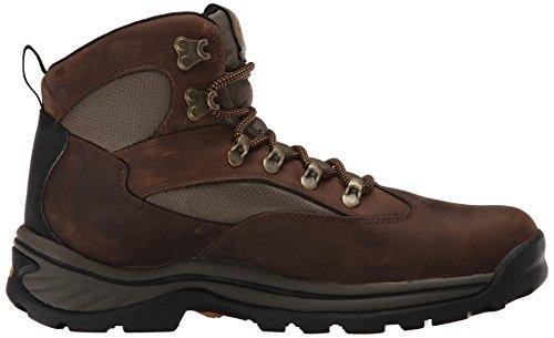 Timberland - Zapatillas de senderismo de cuero nobuck para mujer 2