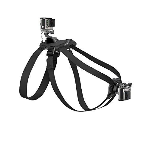 GoPro Fetch (Dog Harness) 2