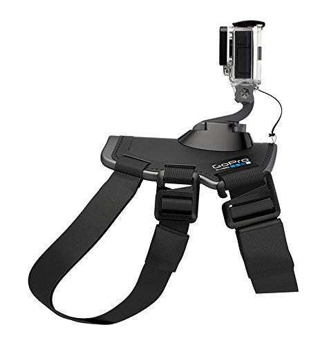 GoPro Fetch (Dog Harness) 11