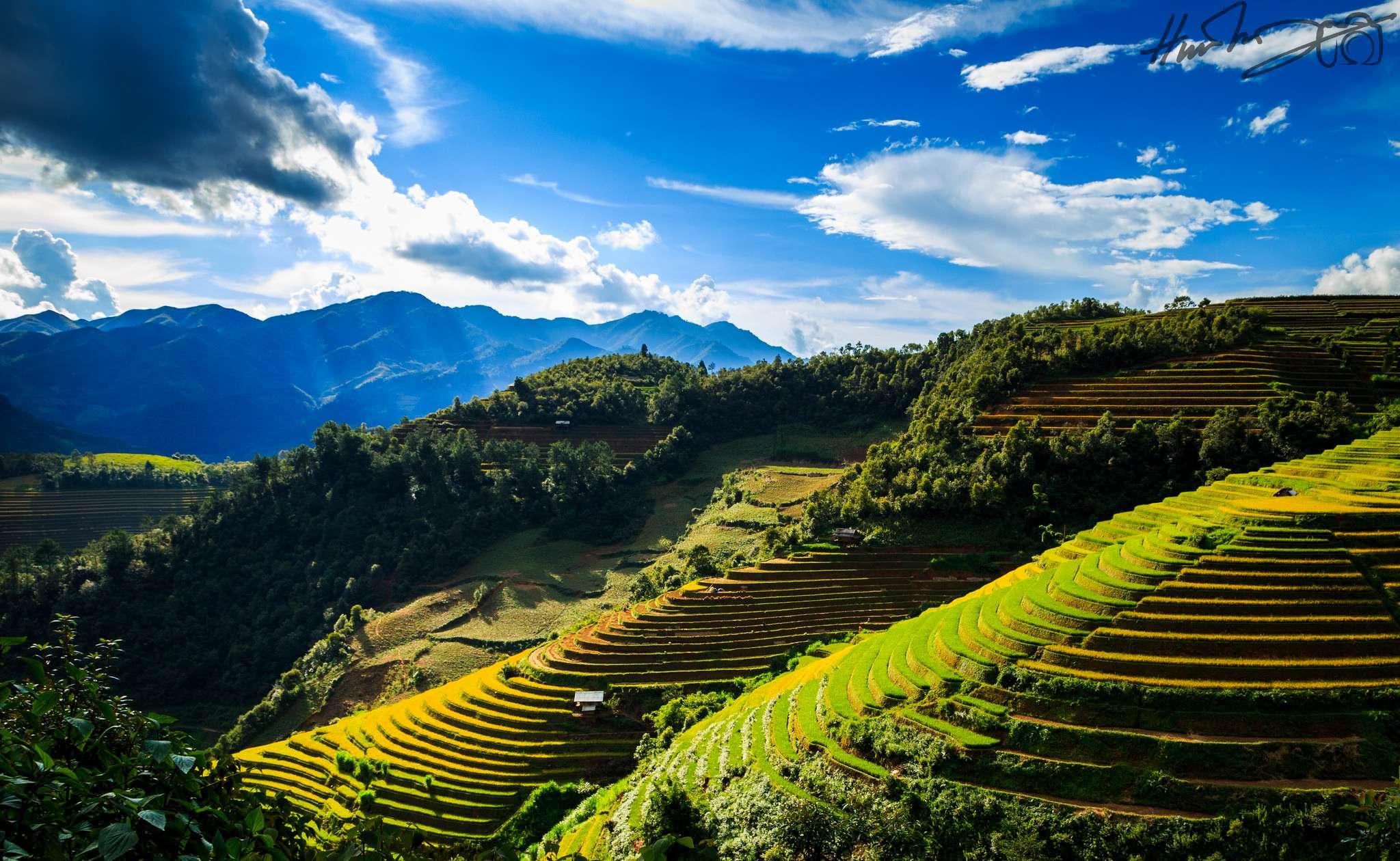 Mù Cang Chải: Vietnam