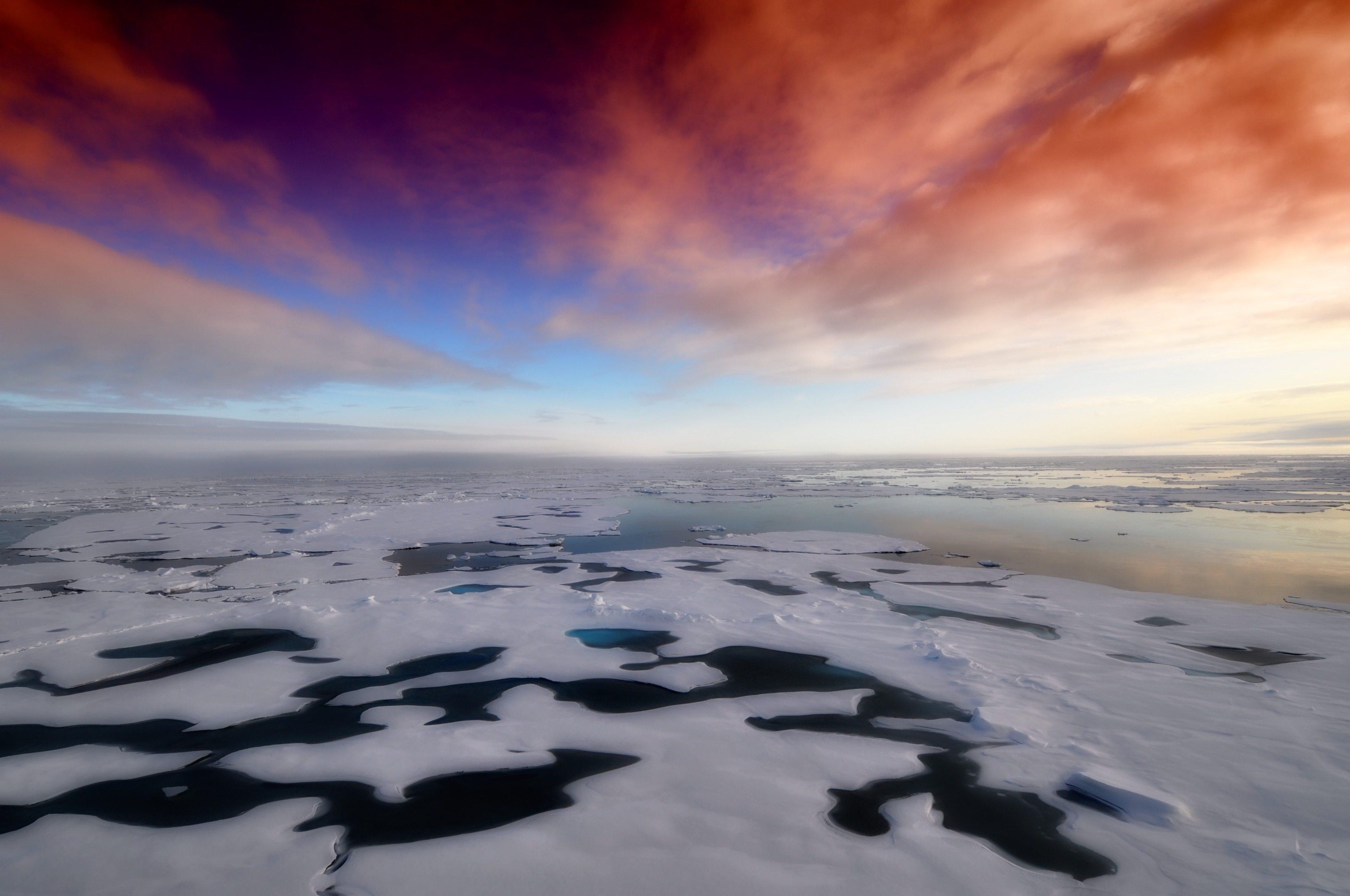 Guías para viajar por la Antártida