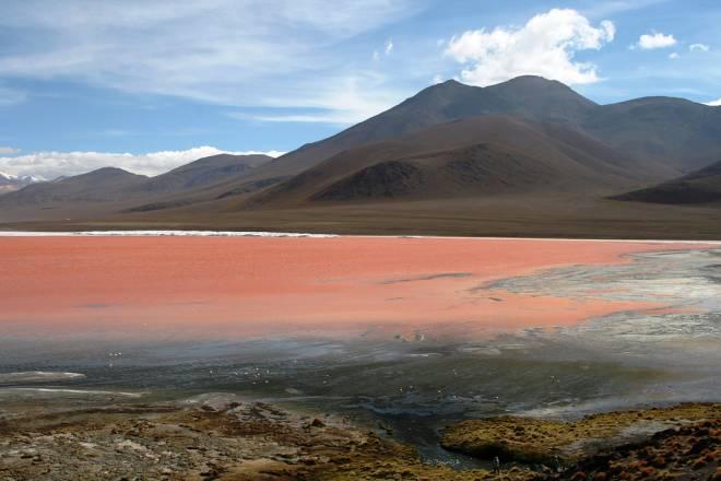Laguna Colorada: La Laguna Roja de Bolivia