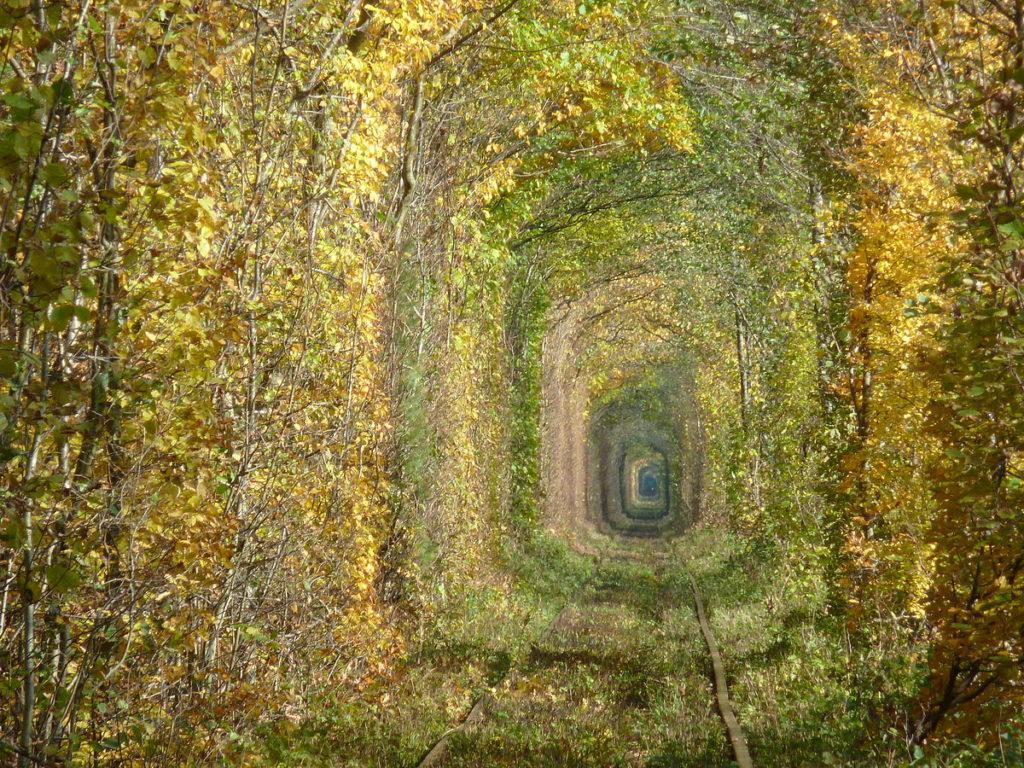El Túnel Del Amor De Klevan 2