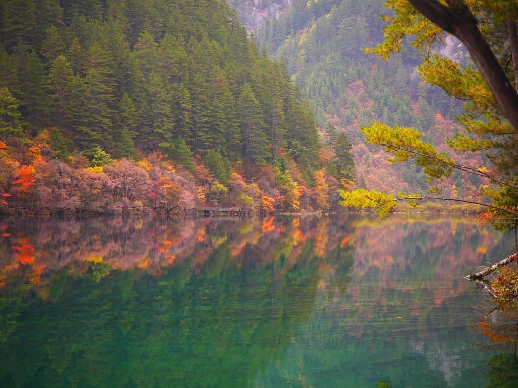 Jiuzhaigou Sichuan China Panda-Lake