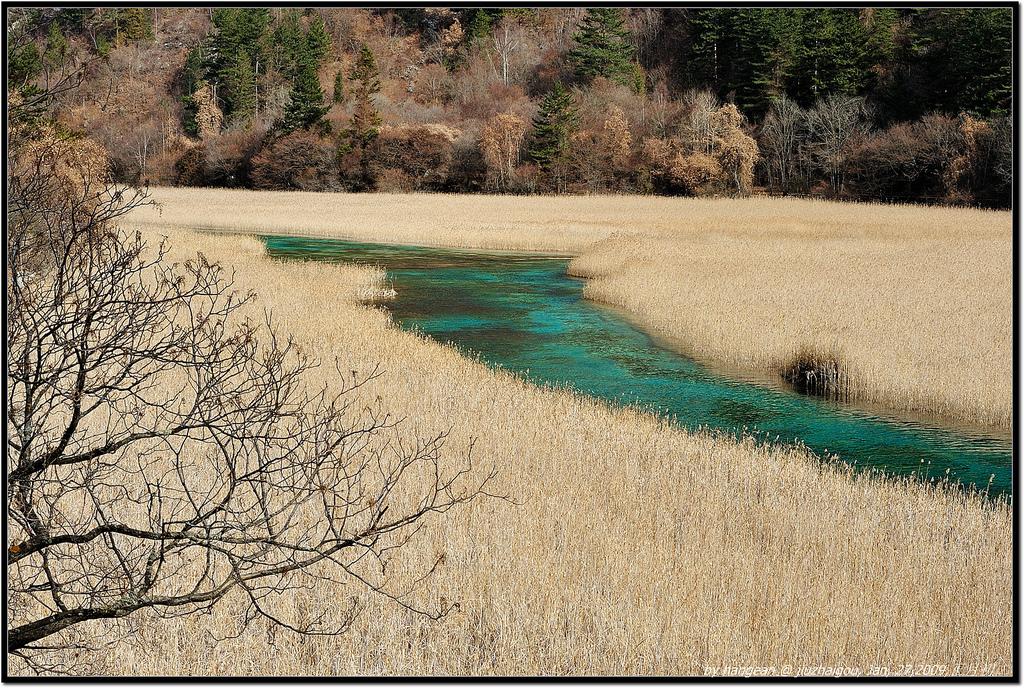 Reed Marsh Lake