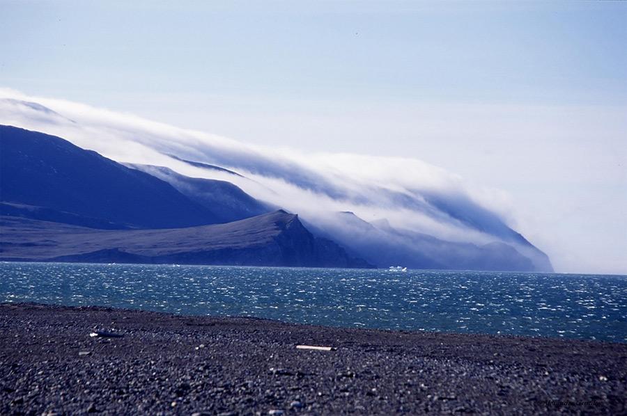 Isla Wrangel : La isla de los osos polares y el mamut lanudo