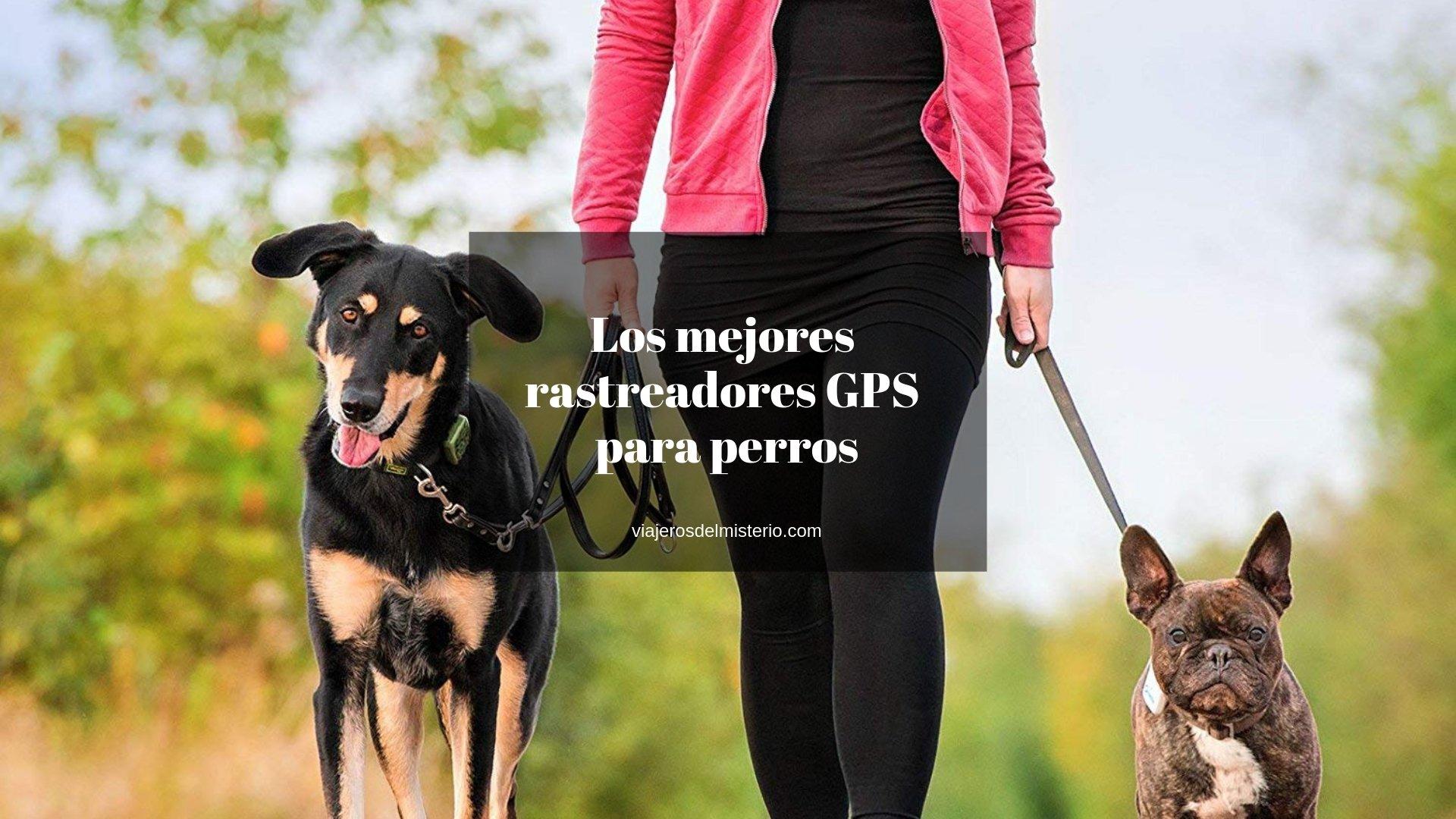 Mejores rastreadores GPS para perros