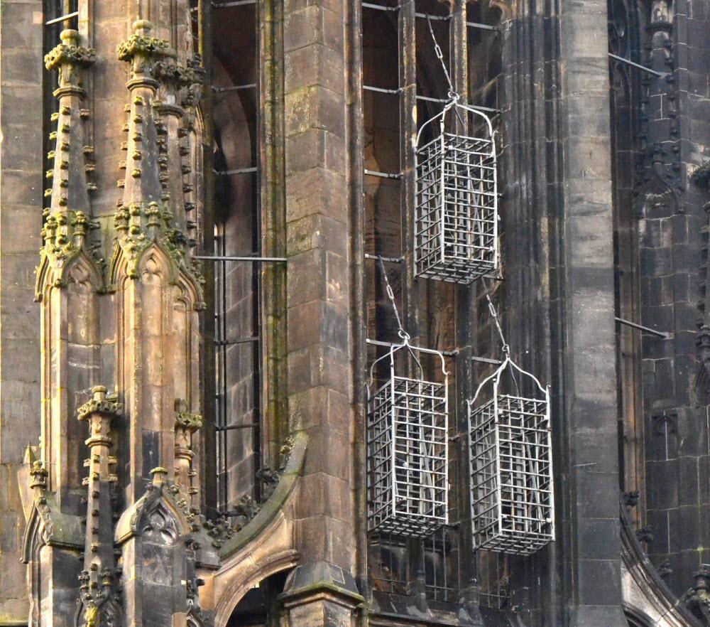 Las jaulas colgantes de la iglesia de San Lamberto en Münster 1